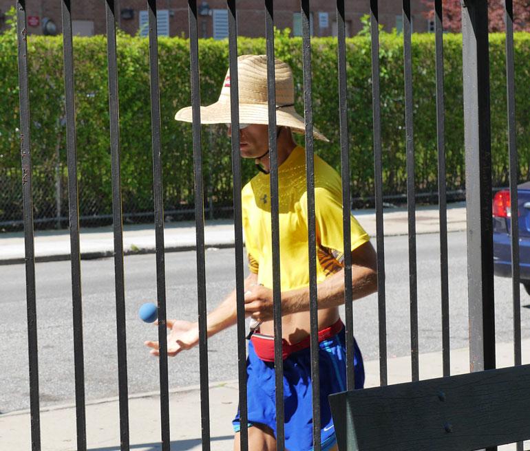atmavir-fence
