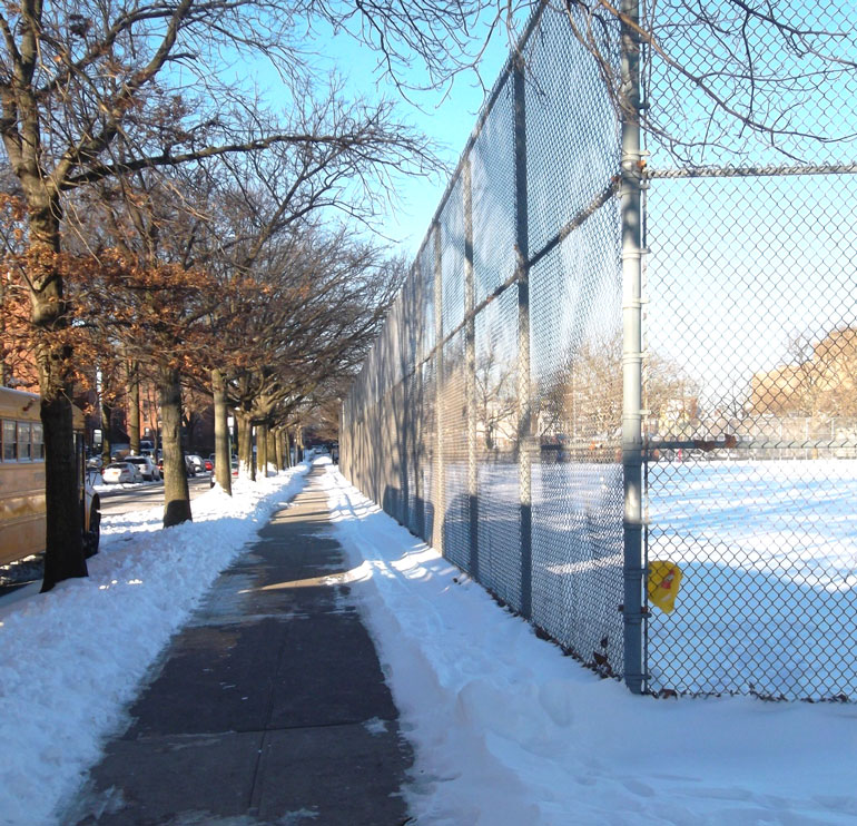 Photo by Bipin January 2012