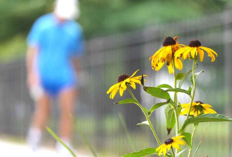 flower-sopan