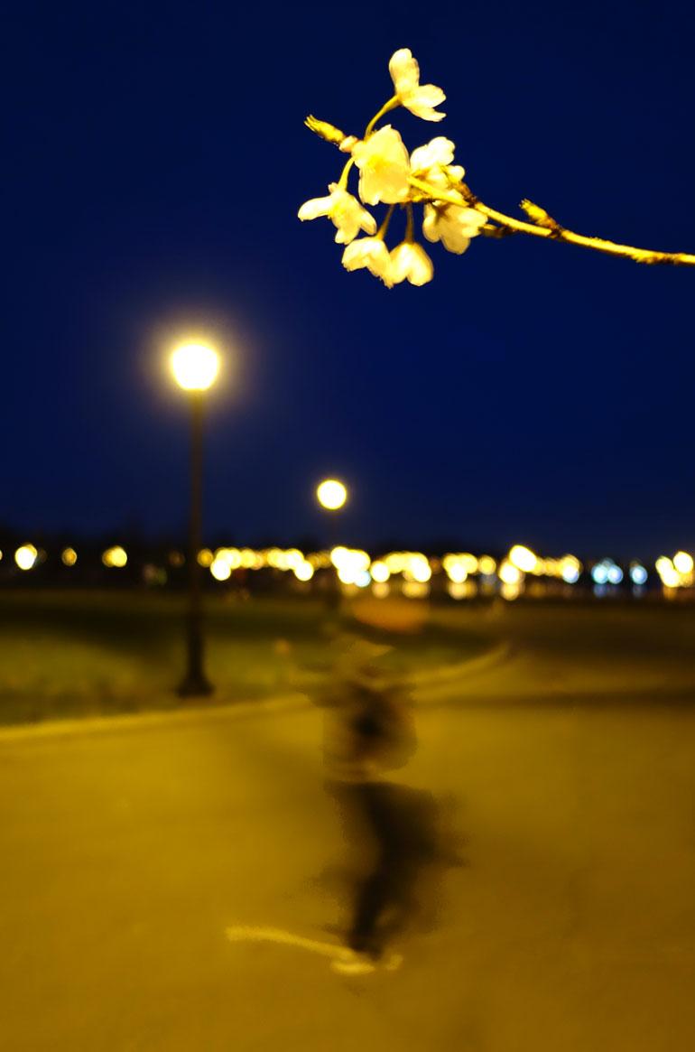 night3