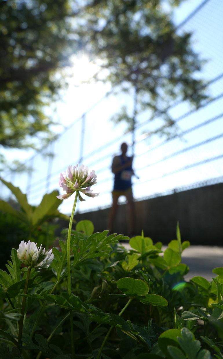 flower-2-mile