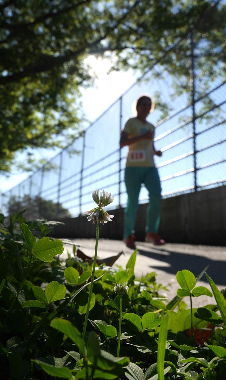 flower-2mile-race