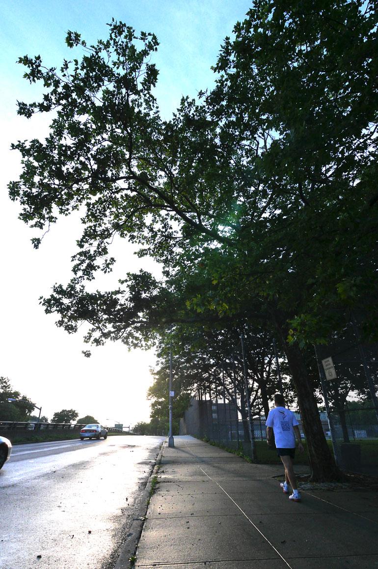 wide-service-road3