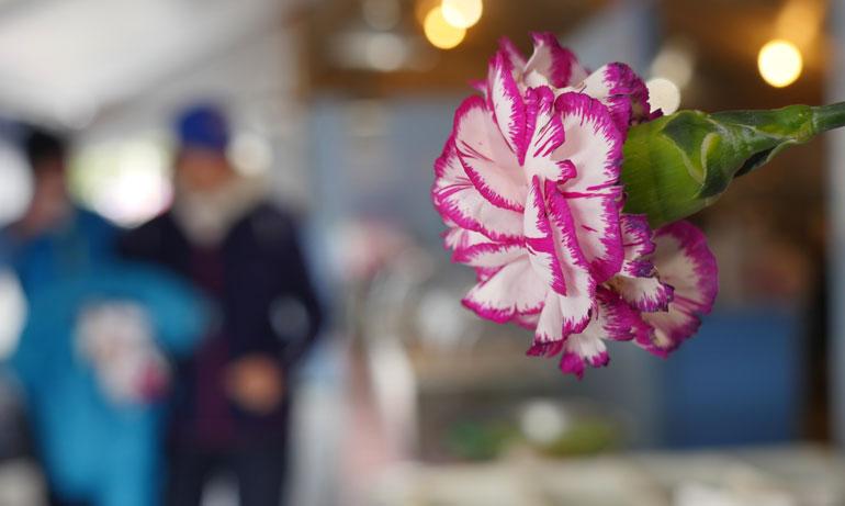 flower-kitchen