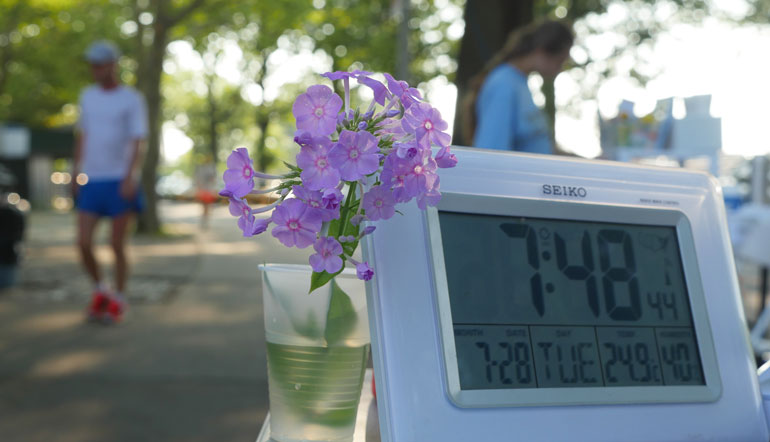 flower-ananda-lahari