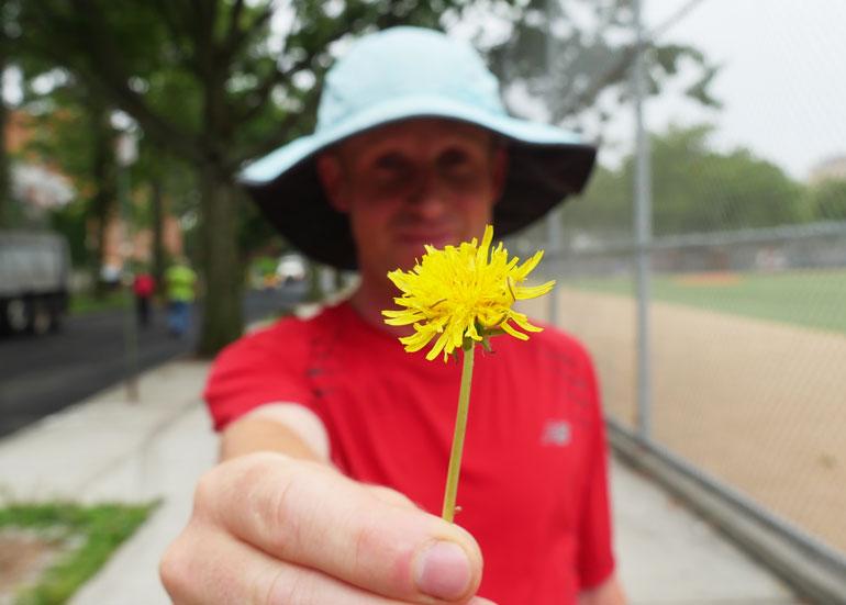 flower-ananda-lahari2