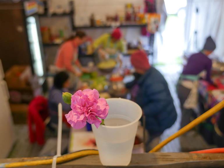 cooks flower 2-1230557