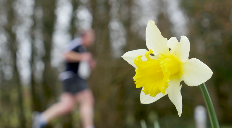 flower-racer