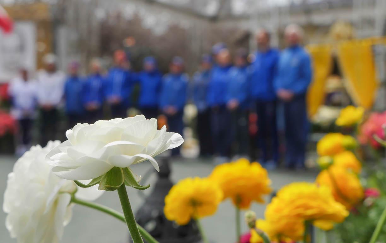 flower team-1200675