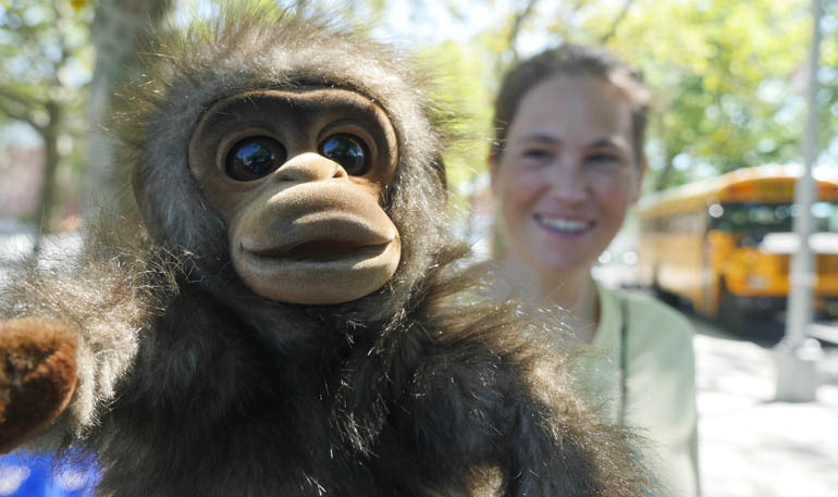 camp monkey-1370700