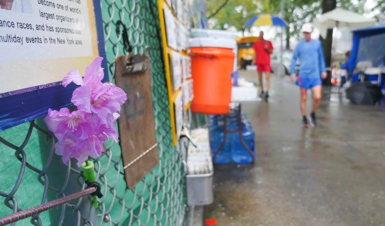 flower ananda-lahari-1380629