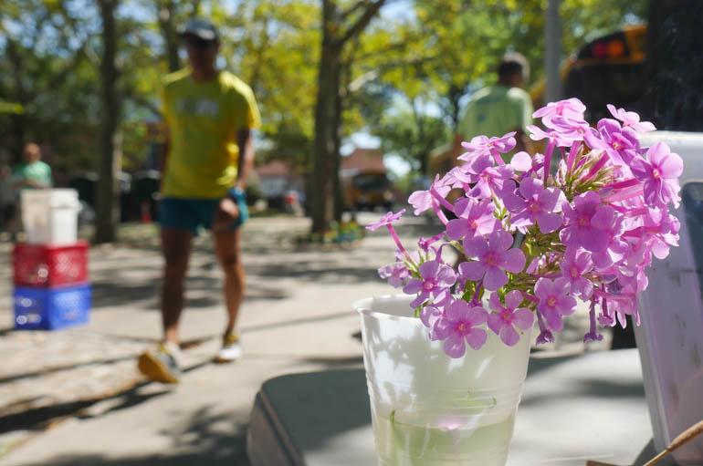 flower sopan-1360871