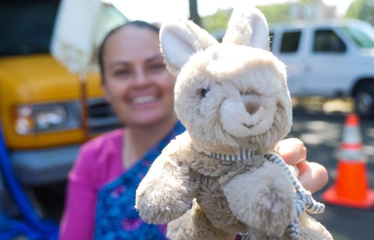 anubha bunny-1410754