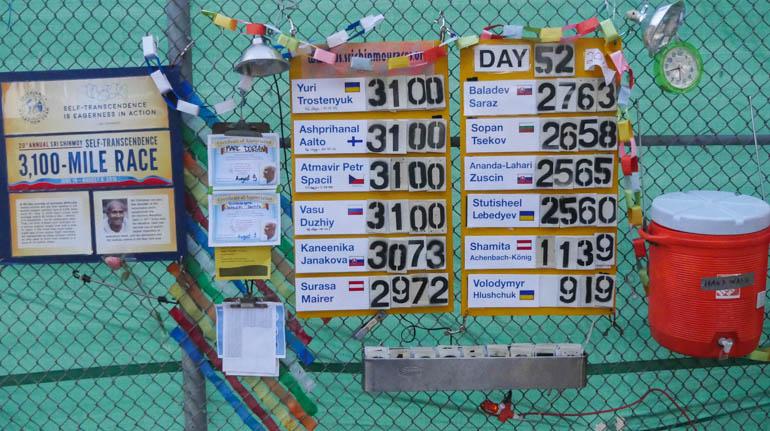 board-1420173