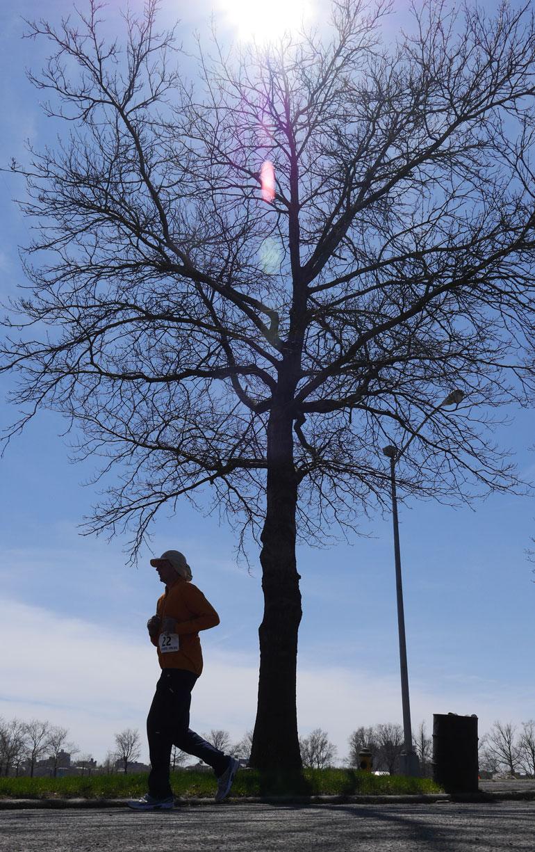park-sun2