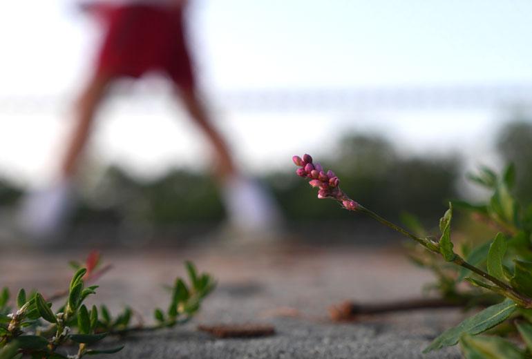flower-good3