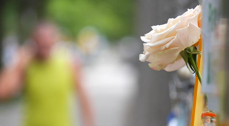 flower-pranjal