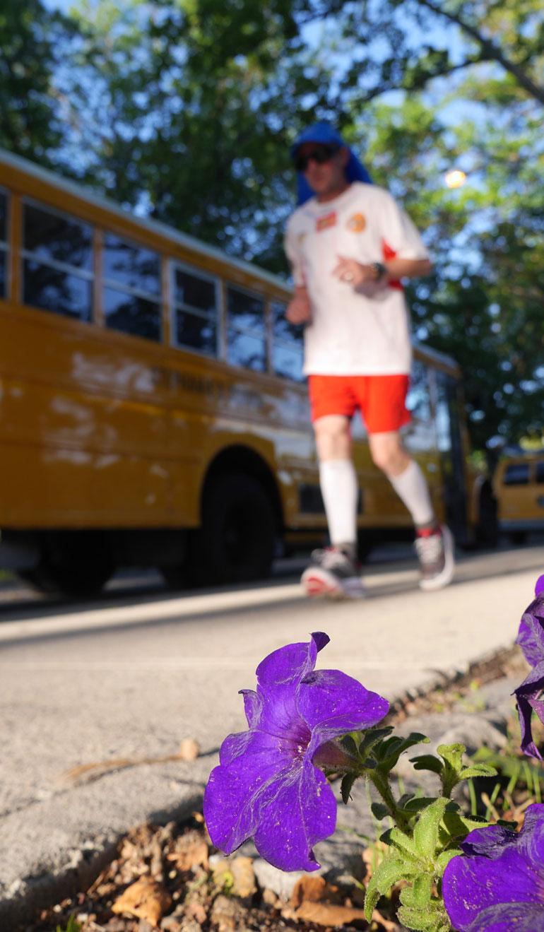 flower-william
