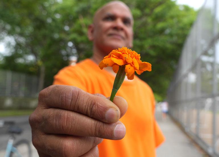 swami-flower