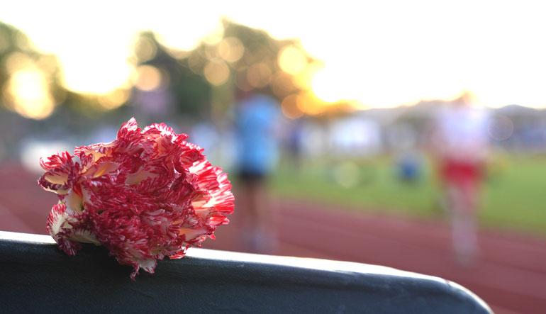 flower-agnikana