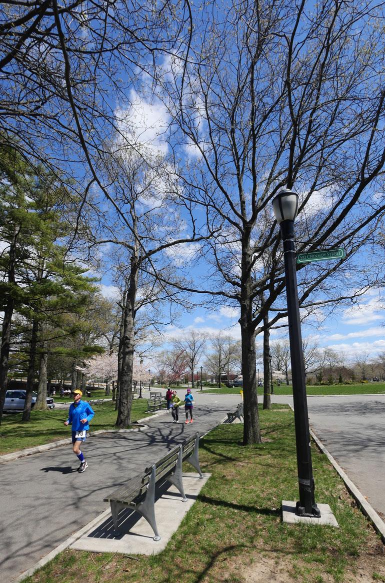 tree-sign