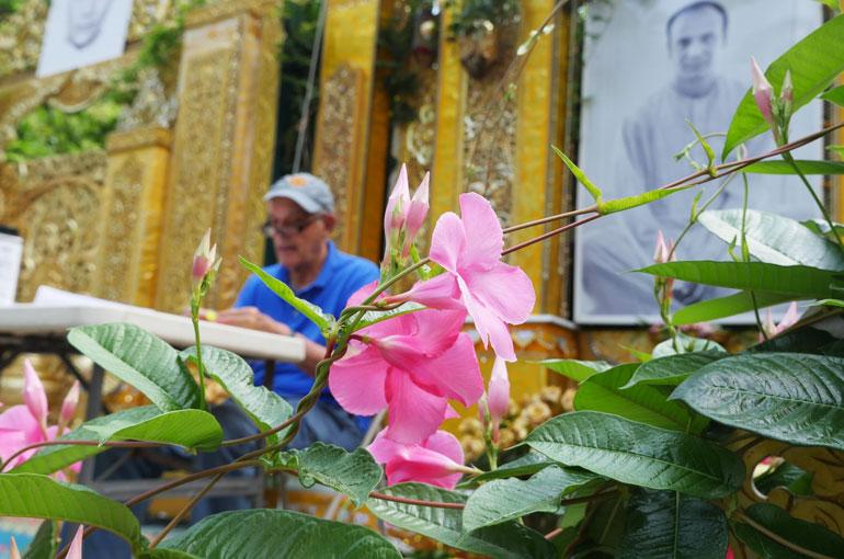 flower-kaivalya