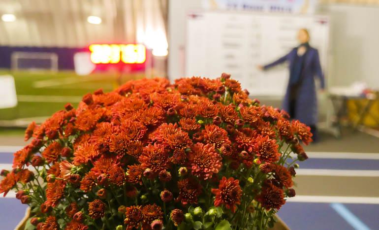 flower final-1190327