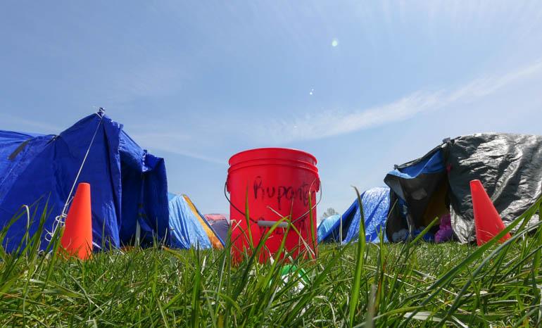 flower bucket-1210833