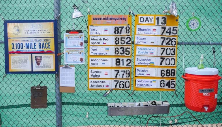 board-1290001