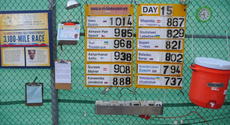 board-1290641
