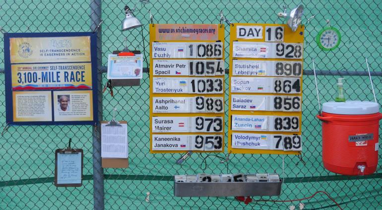 board-1290835