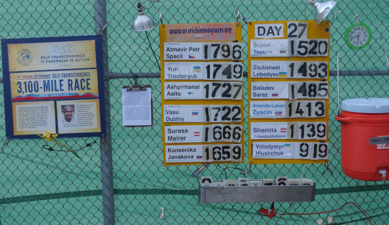 board-1330748