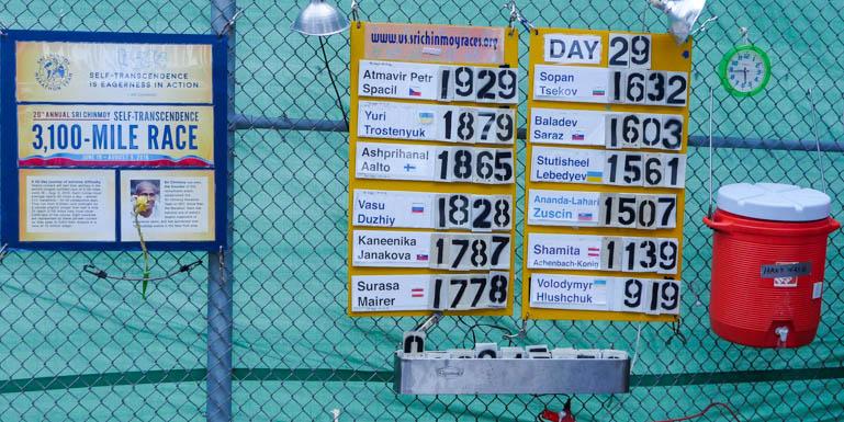 board-1340520