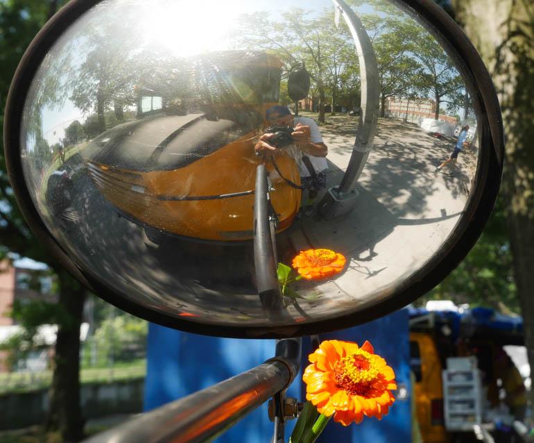 flower ashprihanal-1340705