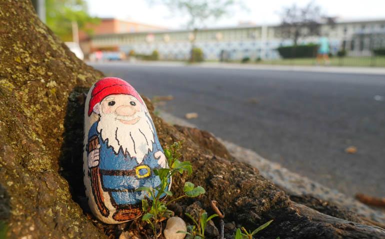 flower gnome-1290148